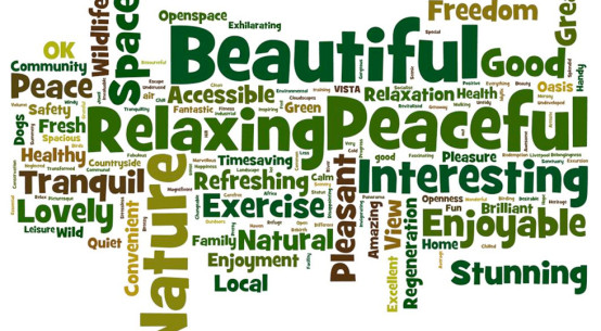 Open spaces play a positive part in their happiness and wellbeing