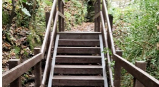 Plaswood's Stairway to Sustainability
