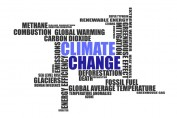 The Climate Change Committee 2021 report to parliament